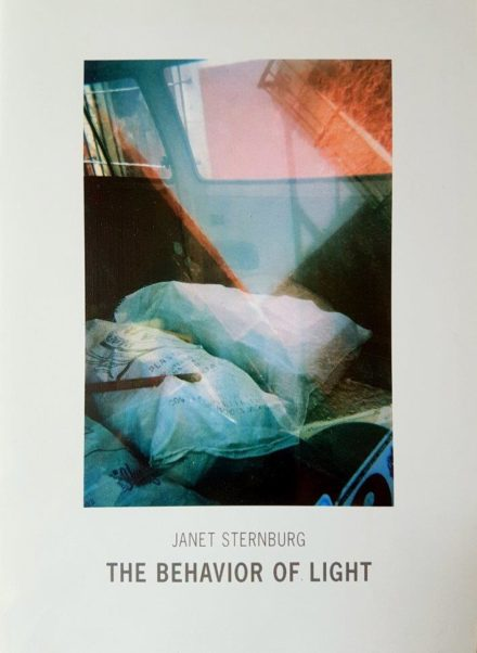 Brochure containing Rohwer's essay 'The lyrical View' on American artist Janet Sternburg (Pg. 9-13, American Embassy, Berlin 2007)